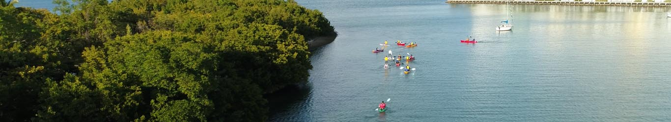 Voted Best Kayaking by Miami New Times