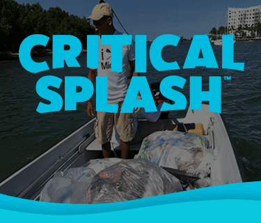Critical Splash Bay Harbor Island Clean Up